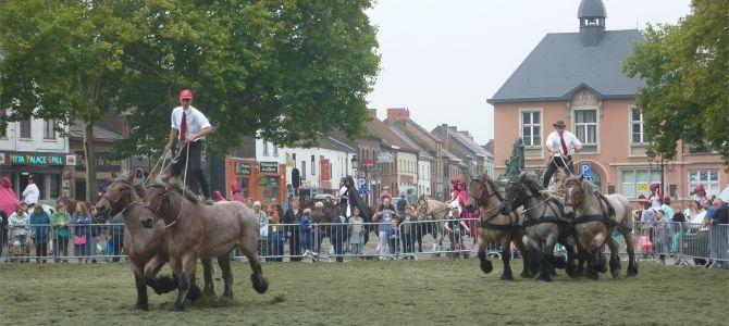Fête du cheval de Cuesmes